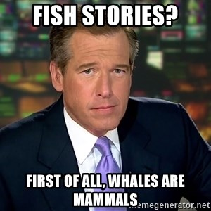 Brian Williams War Stories  - Fish stories? First of all, whales are mammals