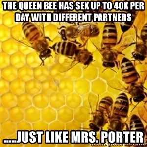 Honeybees - The Queen Bee Has Sex Up To 40x Per Day with Different Partners .....just like Mrs. Porter