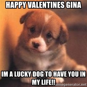 cute puppy - happy valentines gina im a lucky dog to have you in my life!!