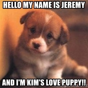 cute puppy - Hello my name is Jeremy  And I'm Kim's love puppy!!