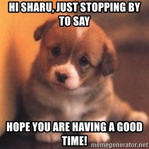 cute puppy - Hi Sharu, Just stopping by to say Hope you are having a good time!