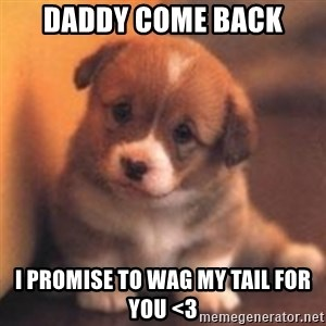 cute puppy - Daddy come back I promise to wag my tail for you <3
