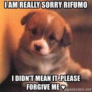 cute puppy - I am really sorry RIFUMO I didn't mean it .please forgive me ♥