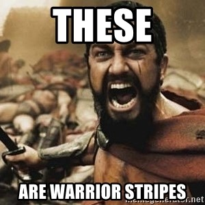 300 - These are WARRIOR STRIPES