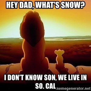 simba mufasa - HEY DAD, WHAT'S SNOW? I DON'T KNOW SON, WE LIVE IN SO. CAL