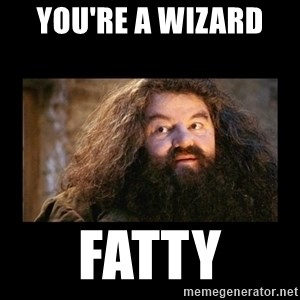 You're a Wizard Harry - You're a wizard  Fatty