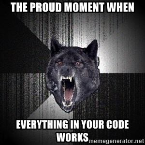 flniuydl - THE PROUD MOMENT WHEN EVERYTHING IN YOUR CODE WORKS