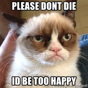 Grumpy Cat 2 - please dont die id be too happy