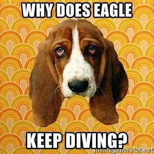 SAD DOG - WHY DOES EAGLE KEEP DIVING?