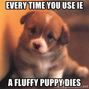 cute puppy - Every time you use IE A fluffy puppy dies