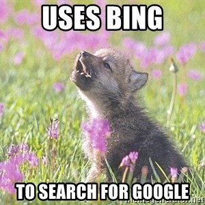 Baby Insanity Wolf - USES BING TO SEARCH FOR GOOGLE