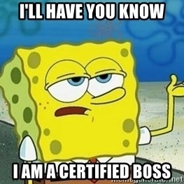 Spongebob I'll have you know meme - I'll have you know I am a certified boss