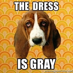 SAD DOG - The  dress is gray