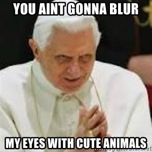 Pedo Pope - you aint gonna blur  my eyes with cute animals