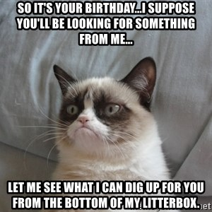 Grumpy cat good - So it's your birthday...I suppose you'll be looking for something from me... Let me see what I can dig up for you from the bottom of my litterbox.