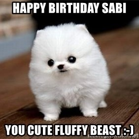 more meat for my duck - Happy Birthday Sabi You cute FLUFFY Beast :-)