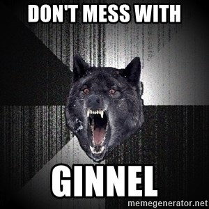 flniuydl - Don't mess with GINNEL