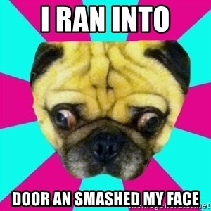 Perplexed Pug - I ran into door an smashed my face