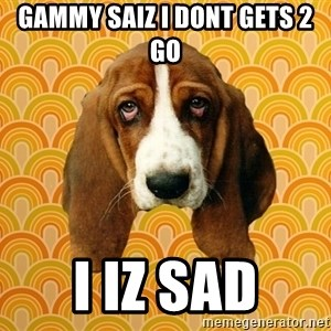 SAD DOG - Gammy saiz I dont gets 2 go I iz sad