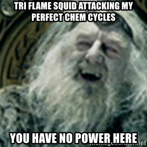 you have no power here - Tri flame squid attacking my perfect chem cycles You have no power here