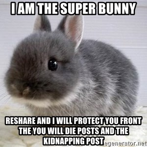 ADHD Bunny - I am the super bunny reshare and i will protect you front the you will die posts and the kidnapping post