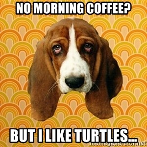 SAD DOG - NO MORNING COFFEE? BUT I LIKE TURTLES...