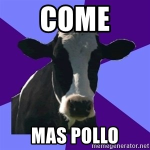 Coworker Cow - Come Mas pollo