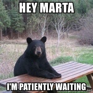 Patient Bear - Hey marta i'm patiently waiting