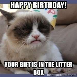 Birthday Grumpy Cat - HAPPY BIRTHDAY! YOUR GIFT IS IN THE LITTER BOX