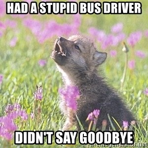 Baby Insanity Wolf - Had a stupid bus driver didn't say goodbye