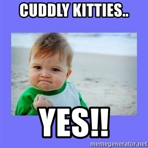 Baby fist - Cuddly Kitties.. YES!!