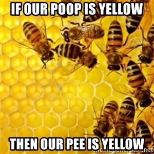 Honeybees - If our poop is yellow Then our pee is yellow