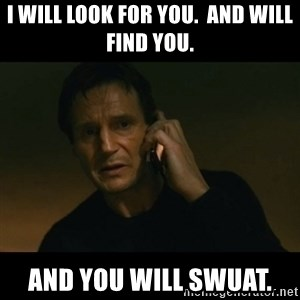 liam neeson taken - I will look for you.  And will find you.  And you will swuat.