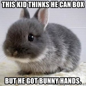 ADHD Bunny - This Kid thinks he can box But he got bunny hands.