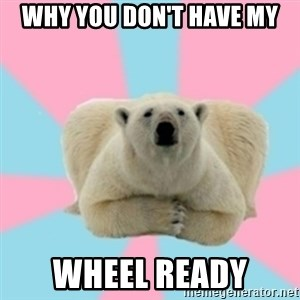 Perfection Polar Bear - Why you don't have my Wheel READY
