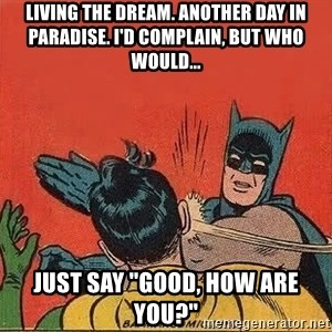 "batman slap robin - Living the dream. Another day in paradise. I'd complain, but who would... Just say ""Good, how are you?"""
