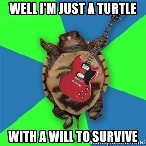 Aspiring Musician Turtle - well I'm just a turtle with a will to survive