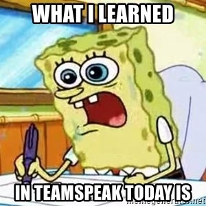 Spongebob What I Learned In Boating School Is - WHAT I LEARNED IN TEAMSPEAK TODAY IS