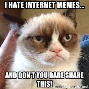 Grumpy Cat 2 - I hate internet Memes... And don't you dare share this!