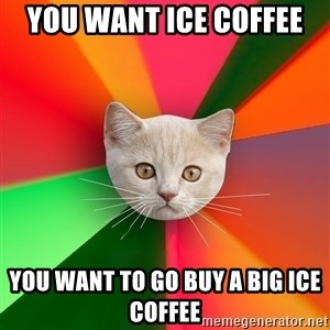 Advice Cat - You want ice coffee  You want to go buy a big ice coffee