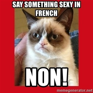 No cat - Say something sexy in French Non!