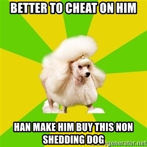 Pretentious Theatre Kid Poodle - Better to cheat on him Han make him buy this non shedding dog