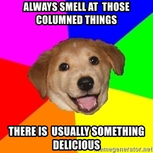 Advice Dog - ALWAYS SMELL AT  THOSE COLUMNED THINGS THERE IS  USUALLY SOMETHING DELICIOUS