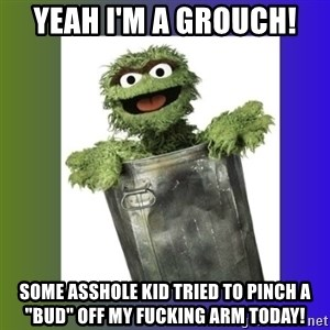 """Oscar the Grouch - Yeah I'm a grouch! Some asshole kid tried to pinch a """"bud"""" off my fucking arm today!"""