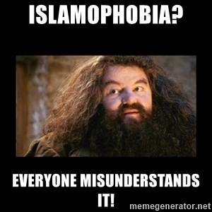 You're a Wizard Harry - Islamophobia?   Everyone misunderstands it!