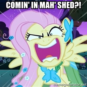 angry-fluttershy - COMIN' IN MAH' SHED?!