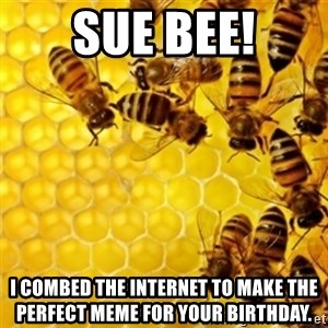 Honeybees - Sue Bee! I combed the internet to make the perfect meme for your birthday.