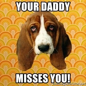 SAD DOG - Your daddy misses you!
