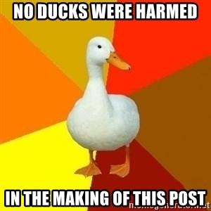 Technologyimpairedduck - No ducks were harmed  in the making of this post