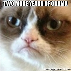 angry cat asshole - two more years of obama